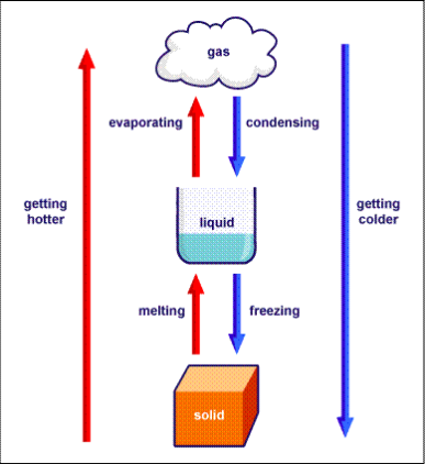 Endothermic & E... Endothermic And Exothermic Reactions Temperature Change