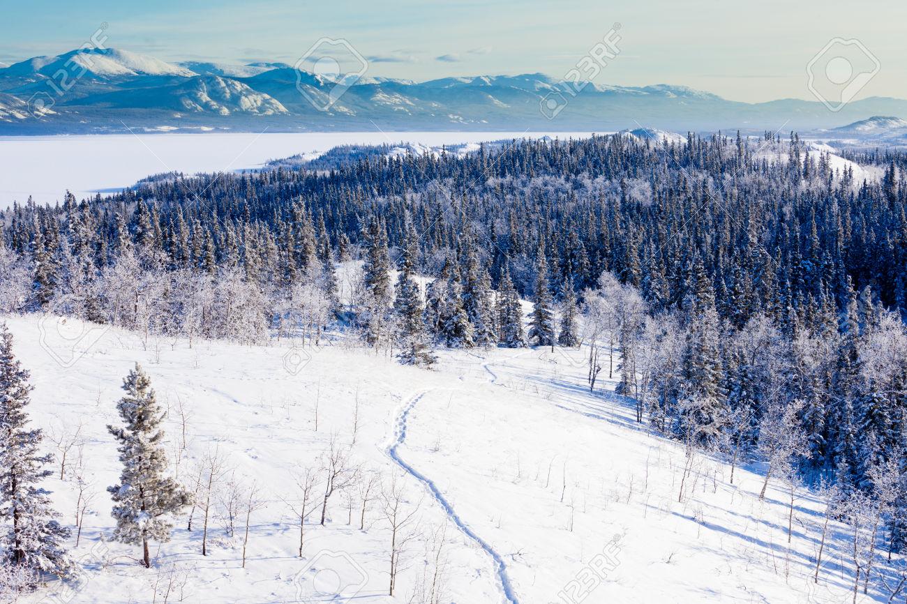 Yukon frost penetration