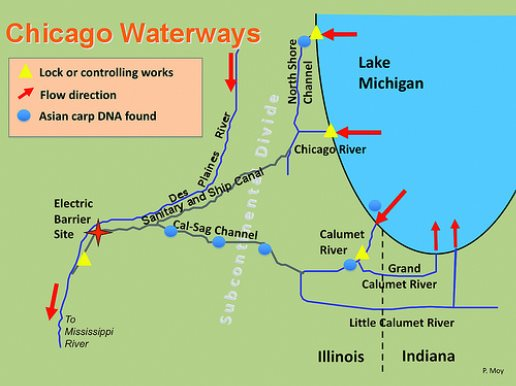 Chicago River Project by Henry on emaze