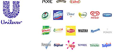 Resultado de imagen para marcas de respaldo