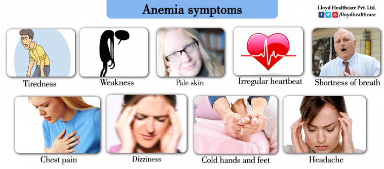 Causes of microcytic anemia in adults