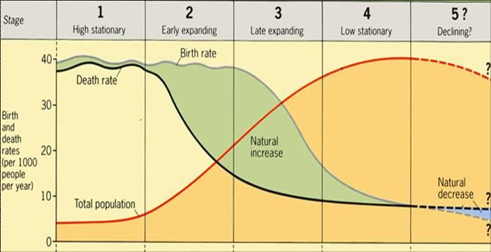 4 Main Stages of Demographic Transition | Economic Development