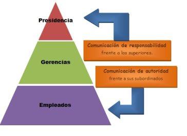 Organizacion Lineal Funcional Y Li