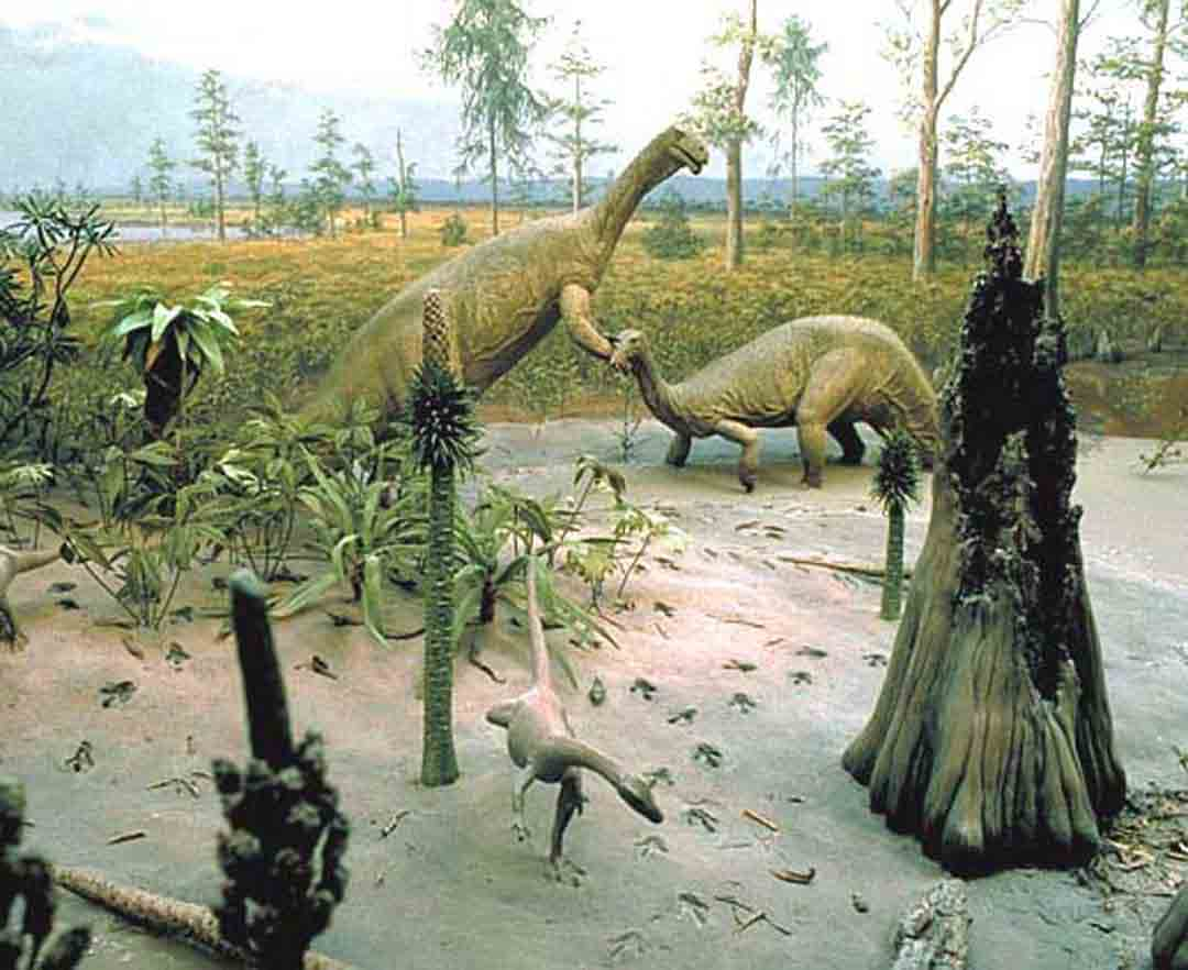 Triassic Animals List The Mesozoic Era on em...