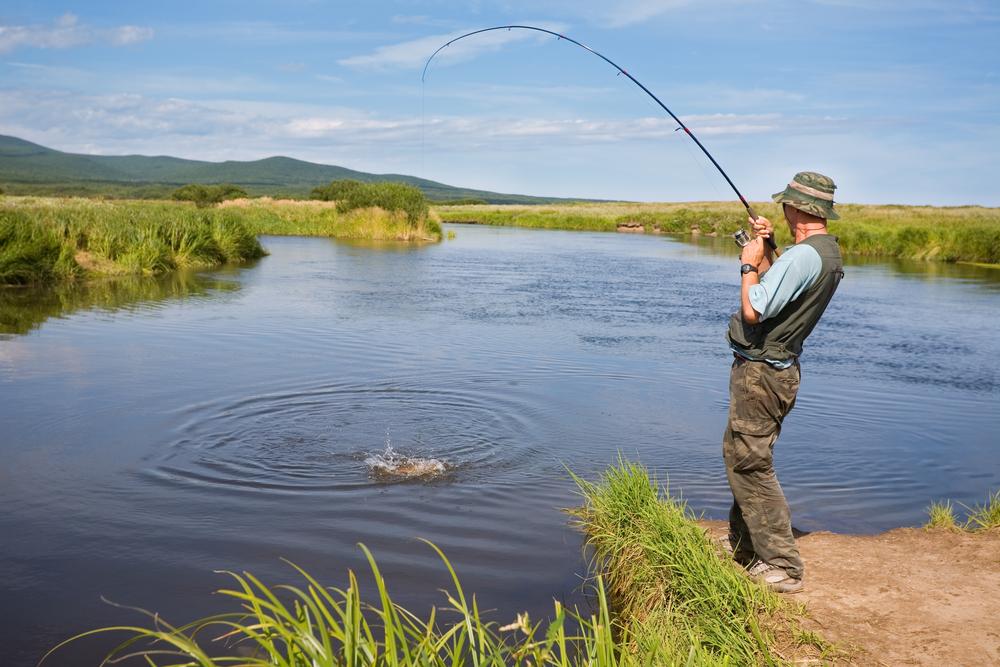 клев рыбы в ростове на дону на поплавочную удочку