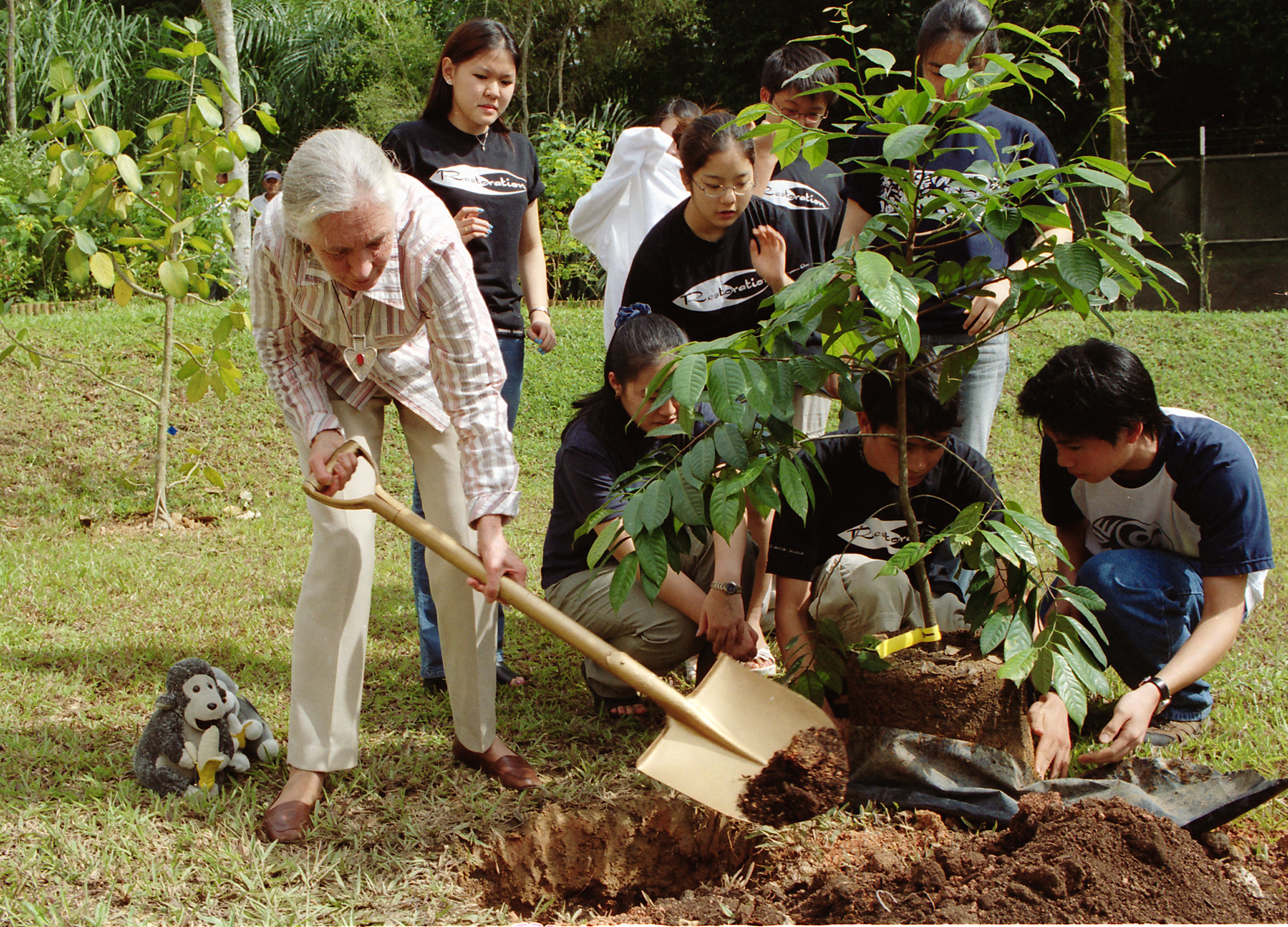 Jane was learning about chimps for more than 50 years jane helped reforest parts of tanzania africa jane goodall made her own institute
