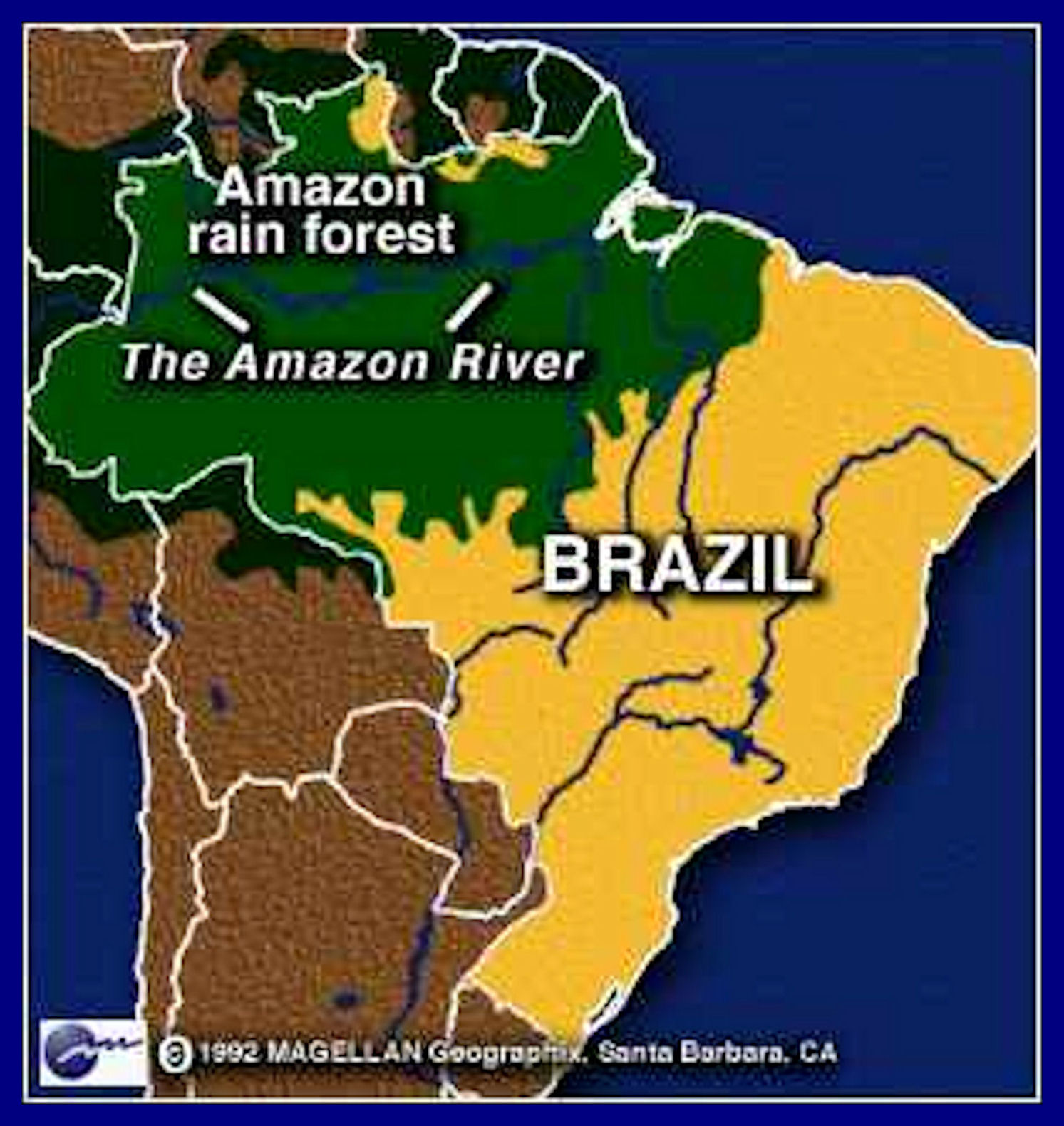 APES Amazon Rainforest on emaze