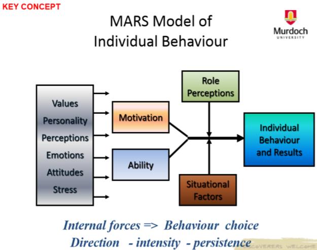 mars model of individual behavior and performance pdf