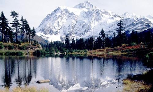 Alpine Tundra Biome on emaze