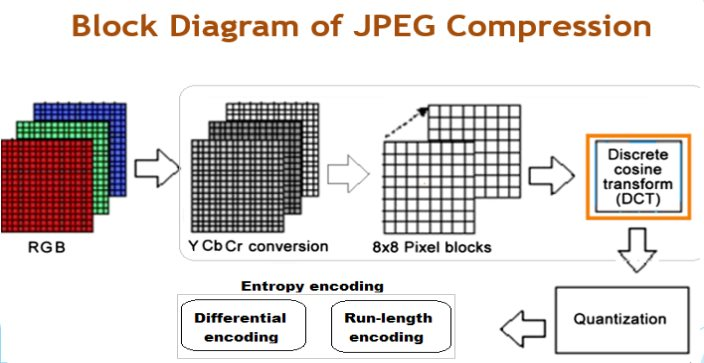 Untitled on emaze block diagram of jpeg compression 8 ccuart Image collections
