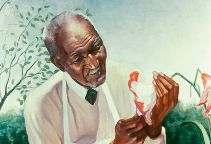 george washington carver difficult path to great George washington carver difficult path to great accomplishments 565 words | 2 pages george washington carver was born on july 12, 1864, during the civil war, in diamond grove, missouri.