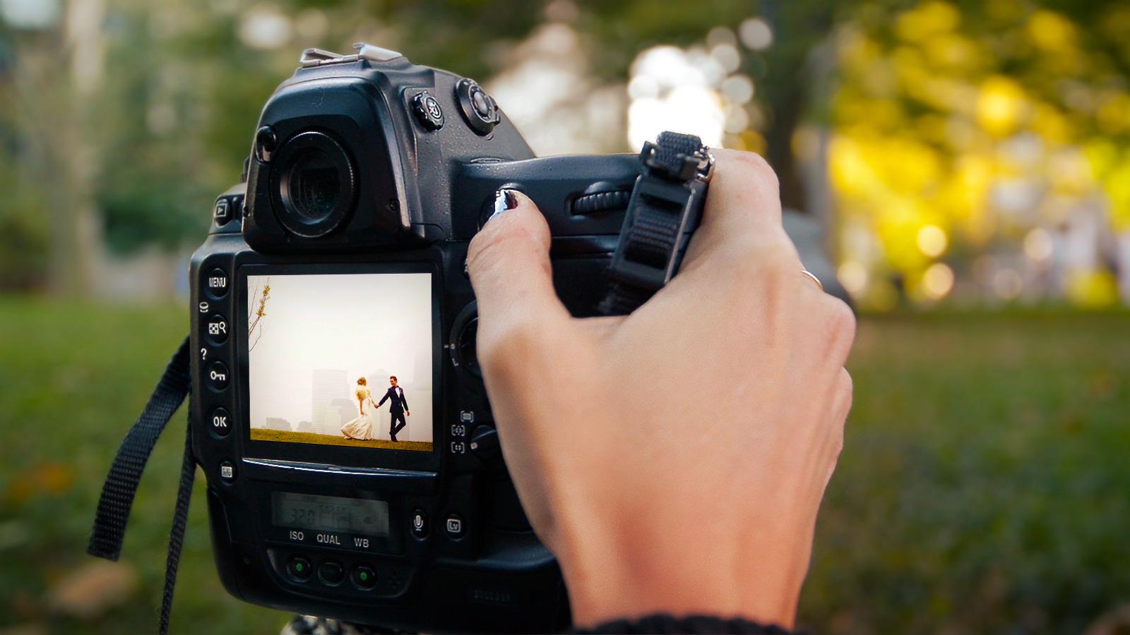 Как научиться фотографировать красиво. Как выбрать