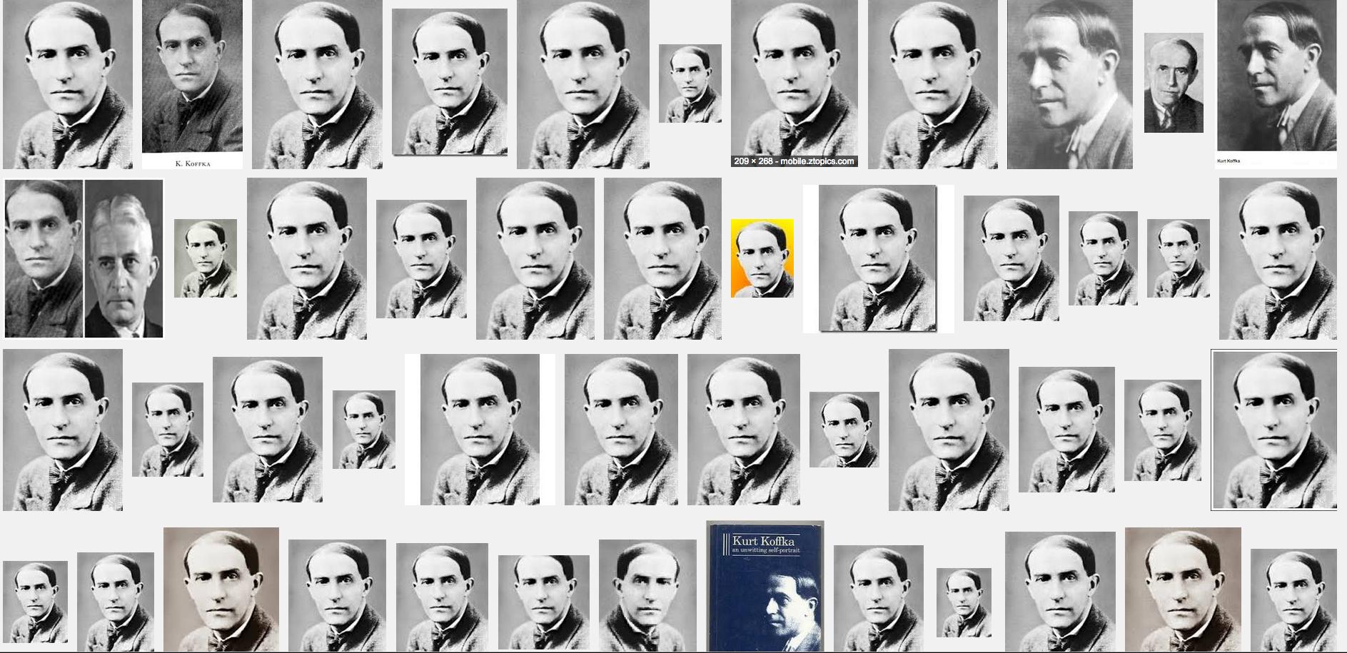 the life and works of wolfgang kohler a gestalt psychologist Gestalt psychology:wolfgang kohler, kurt koffka, edward de bono history and systems of psychology social sciences psychology.