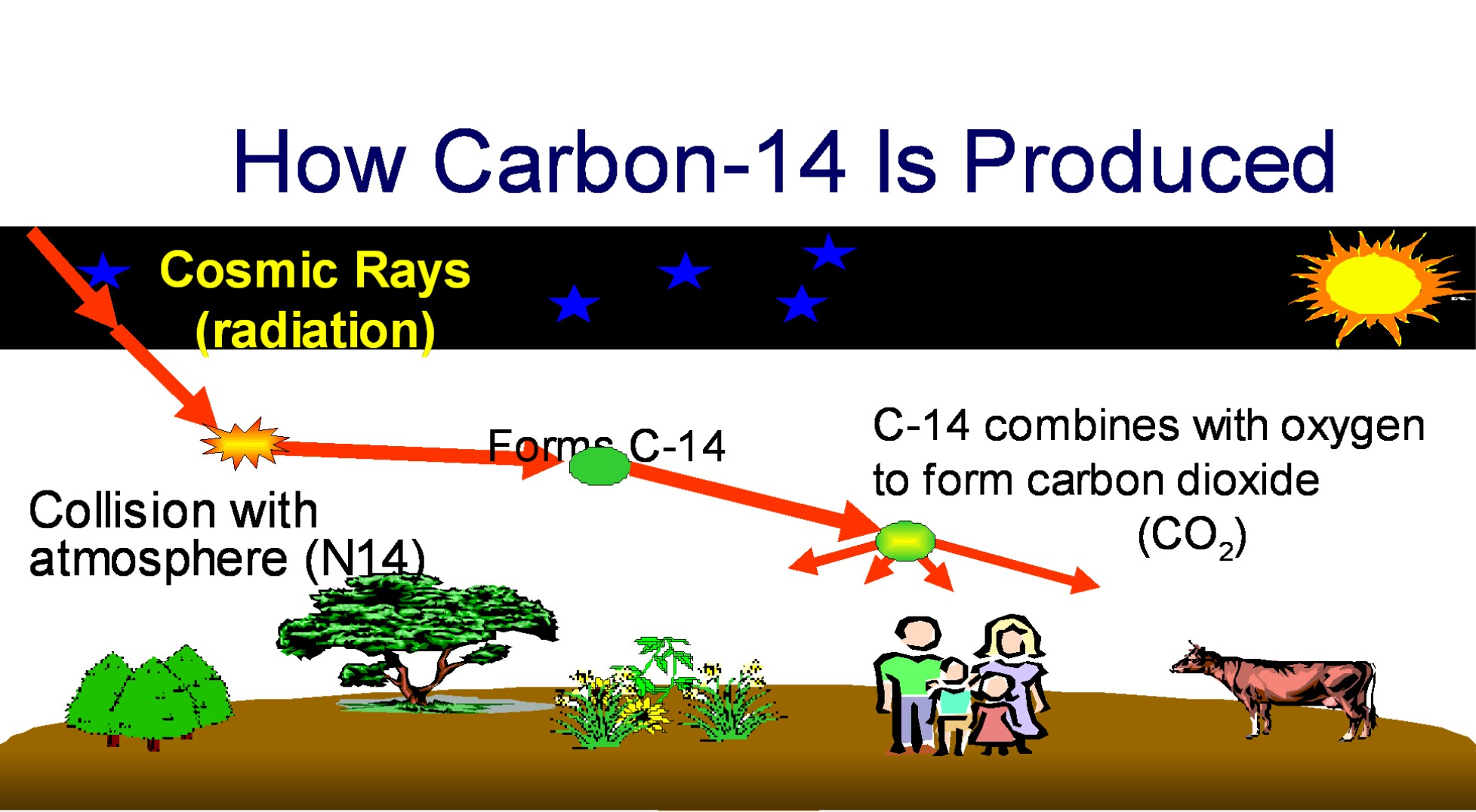 What does carbon dating mean