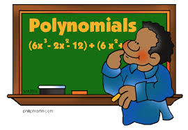 applications of polynomials in daily life