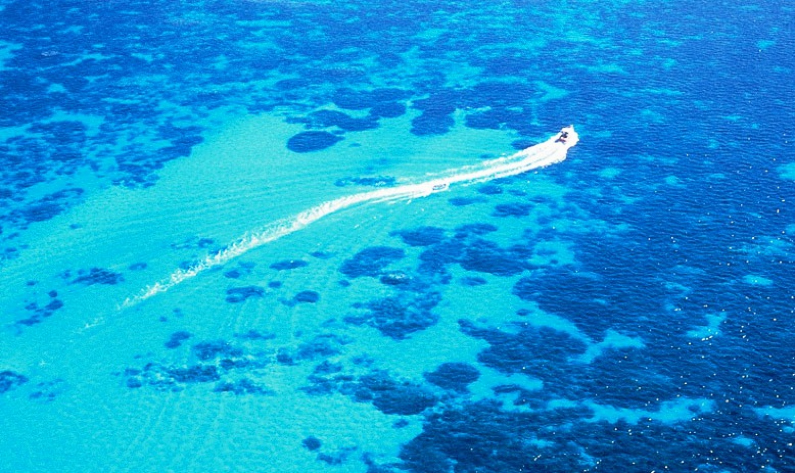 ningaloo reef how to get there