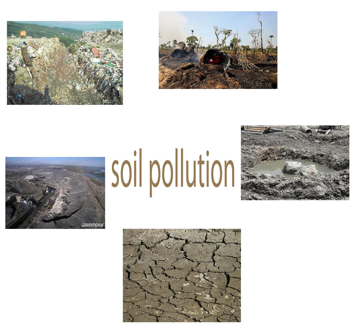 causes of soil pollution due to fertilizer Scribd is the world's largest  this form of pollution can occur due to release of  fertilizers and insecticides are the most common causes of soil pollution.