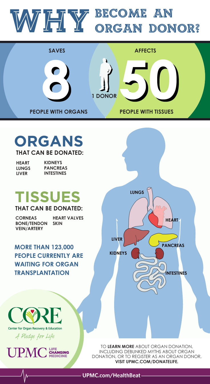 effects on organ donation