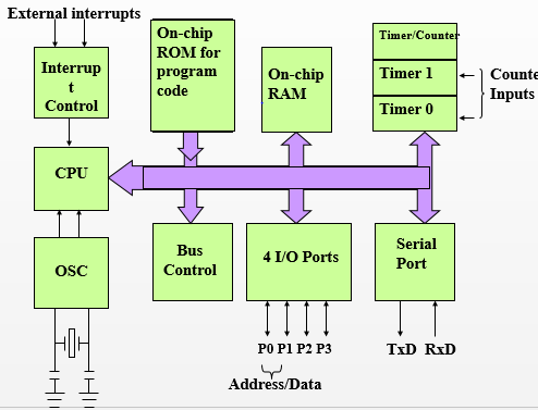 Ahd project presentationpptx on emaze internal structure of a micro controller at89s5251 ccuart Choice Image