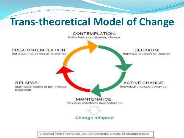 theoretical models in humans services Windows 8 desktop, windows 7, xp & vista kindle cloud reader read instantly in your browser handbook of child psychology, theoretical models from the publisher this four-volume handbook is the definitive reference on child development it serves as a sourcebook, encyclopedia, and.