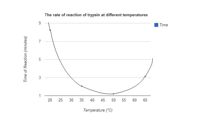biology coursework the effect of trypsin Bio temp trypsin 16731 views blog articles the trypsin will be absent to ensure that the trypsin is actually making an effect in the - biology booklet.