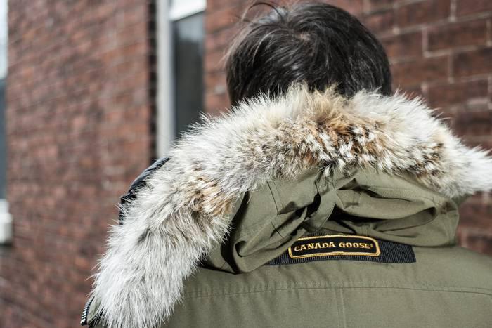 canada goose use of fur