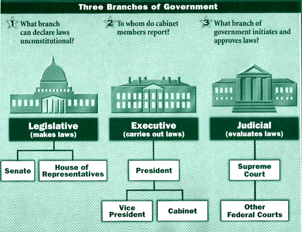a history and analysis of the united states government The government of the united states has had a vital and normal organic growth and has proved itself eminently adapted to express the changing temper and purposes of the american people from age to age.