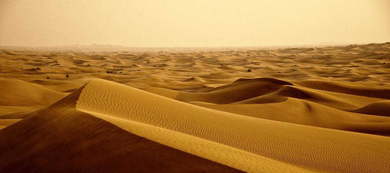 look like desert at all   Desert