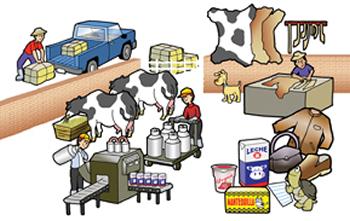 Unidad i sistemas de producci n administracion de for Maquinaria y utensilios para la produccion culinaria