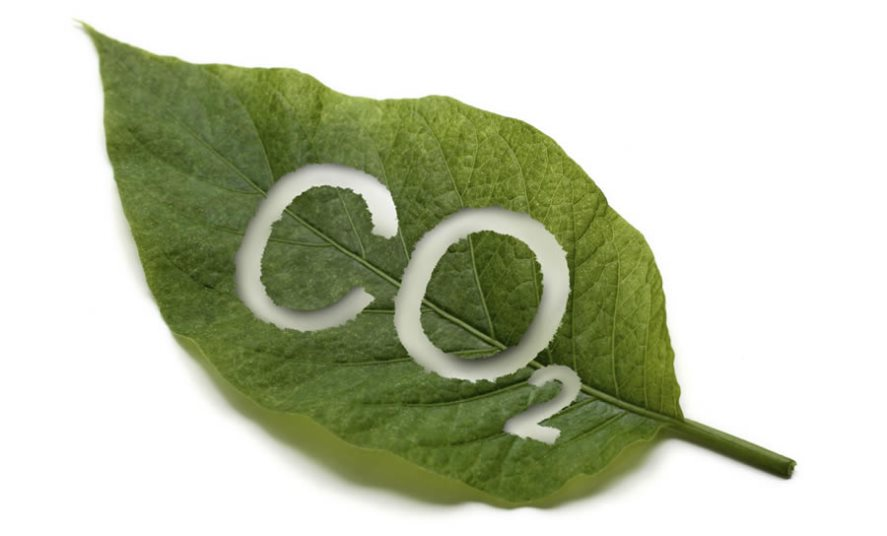 infinity vapour. where does carbon dioxide come from? infinity vapour