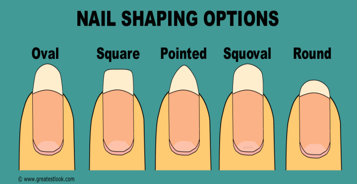DIFFERENT SHAPES OF NAIL