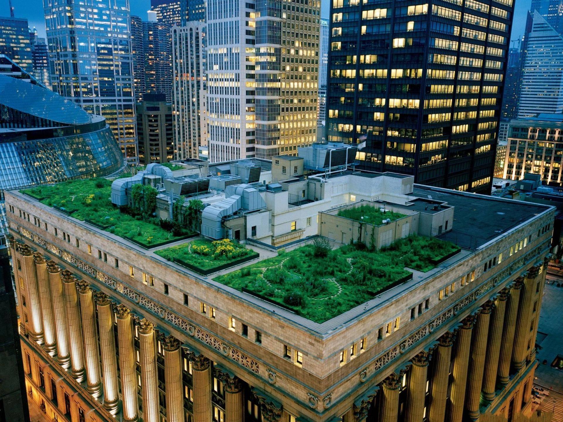 Rooftop Garden rooftop gardens copy1 copy1 on emaze