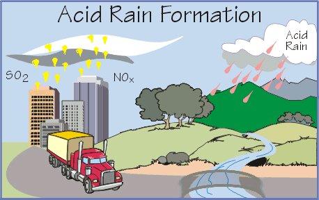 Acid Rain by taylor whitten on emaze