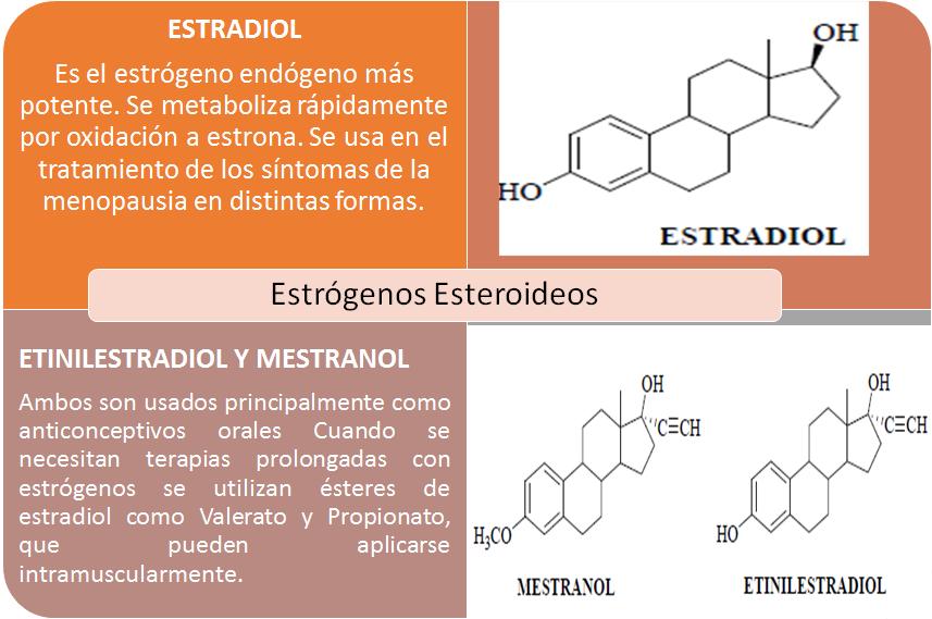 Estilo de vida con activar metabolismo para adelgazar