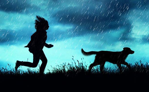 Resultado de imagen para rain reign
