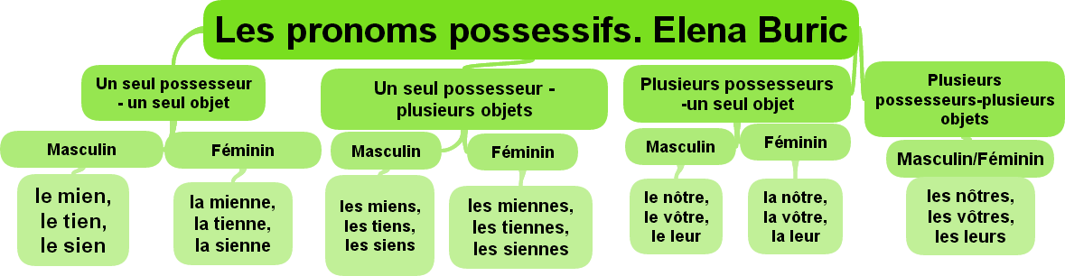 Les Pronoms Possessifs By Elena Buric On Emaze