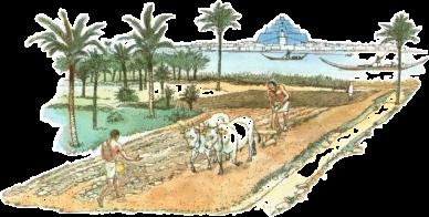 Civilta Mesopotamiche