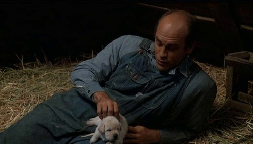 Who Kills The Lennie S Dog In Of Mice And Men