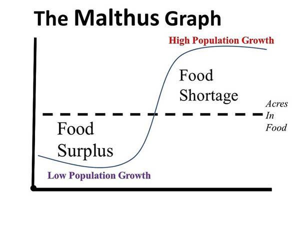population growth in perspective essay Read the population growth essay some factors created differences in regions where population increases as the other experience decrease.