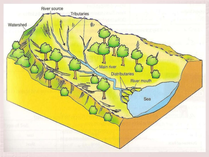 Drainage Basin on emaze