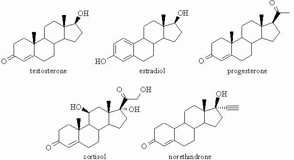 Universo Quimico Bioquimica