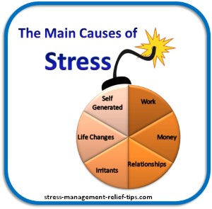 causes of stress Workplace stress numerous studies show that job stress is far and away the major source of stress for american adults and that it has escalated progressively over the past few decades.
