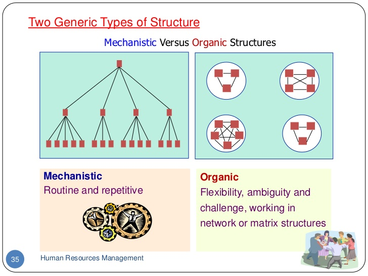 mechanistic vs organic organizational structure contingency theory Organizational design and organic vs mechanistic vs virtual structures principles of management business management.