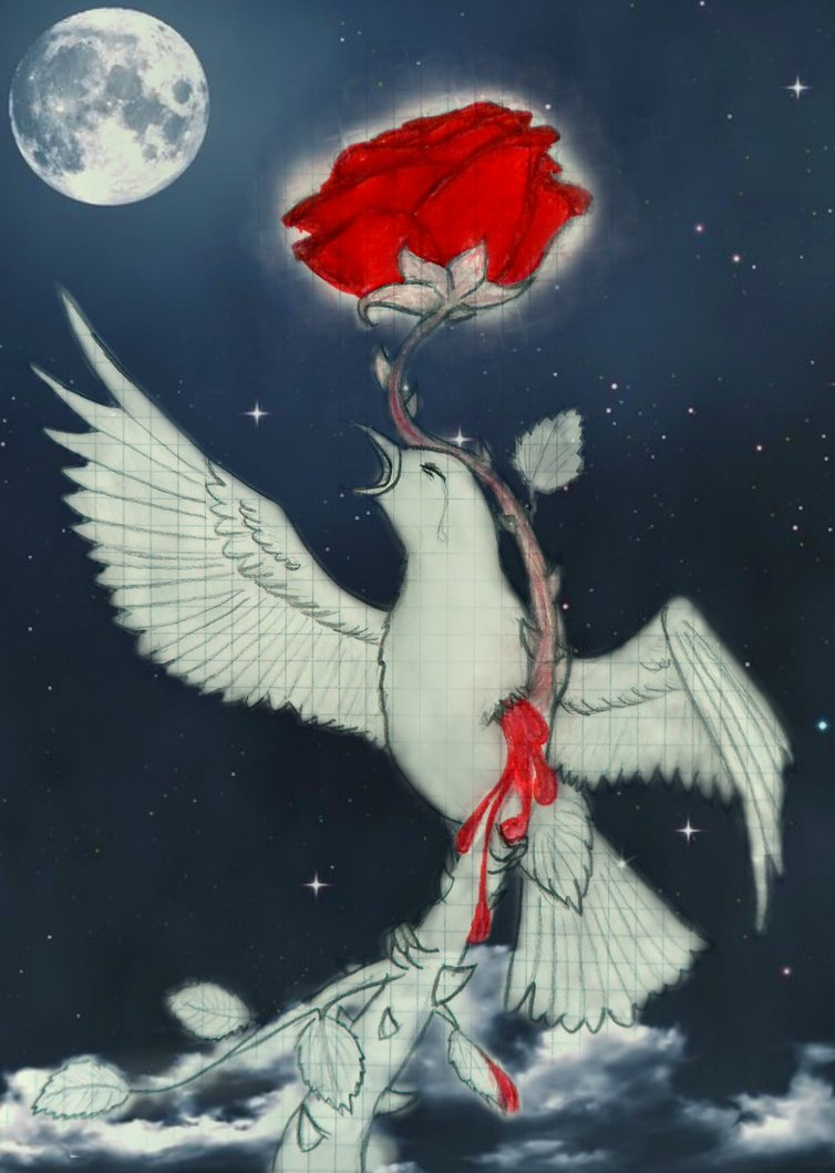 The nightingale and the rose on emaze