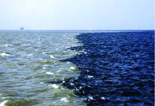 OCEAN DEAD ZONES On Emaze - Biggest ocean in the world