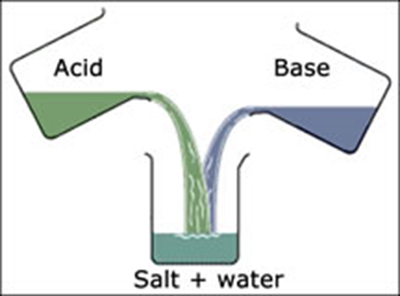Acids & Bases on emaze