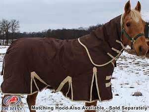 Why Do People Ride Horses In Any Kind Of WheatherWhen Theres Bad Wheather Put A Horse Blanket On The Then They It