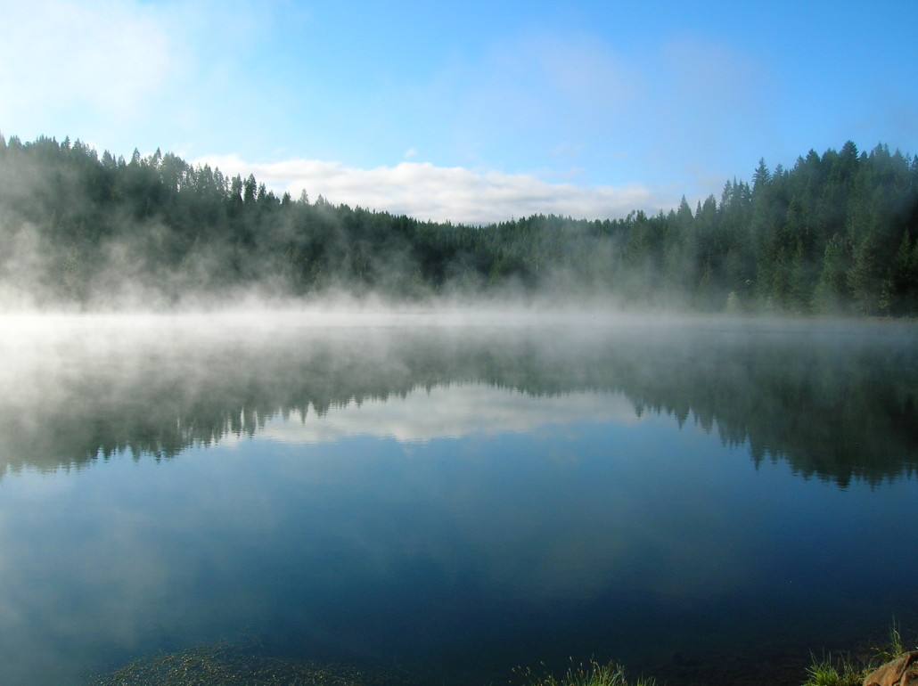 evaporates water