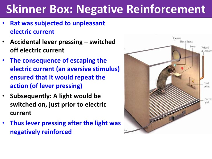 Skinner Box Diagram | www.pixshark.com - Images Galleries ...