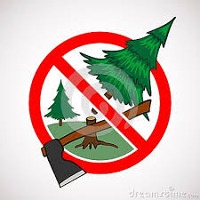We Should Save Trees Because As Deforestation Is Increasing Day By Means Cutting Down Of Spread Greenary In And Around
